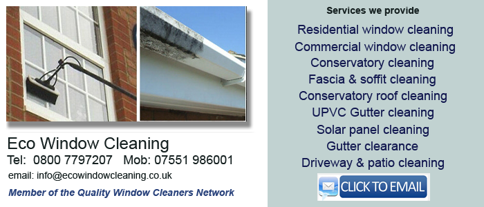 Window cleaner Bramley